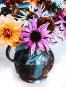16th Aug 2019 - flower power