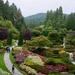 Butchart Gardens DSC_6019 by merrelyn