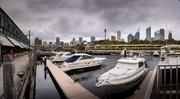 31st Aug 2019 - Sydney skyline