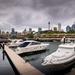 Sydney skyline by pusspup