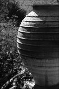 31st Aug 2019 - Terra Cotta Garden Vase