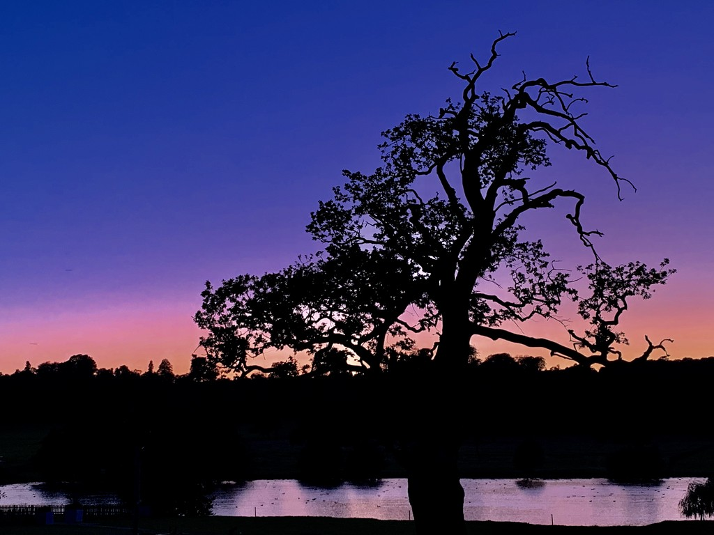 Pre Firework Twilight  by phil_sandford