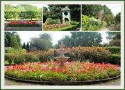 3rd Sep 2019 - Bridgemere Gardens