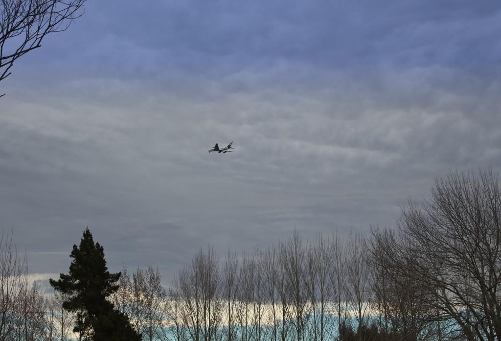 On the flight path by kiwinanna