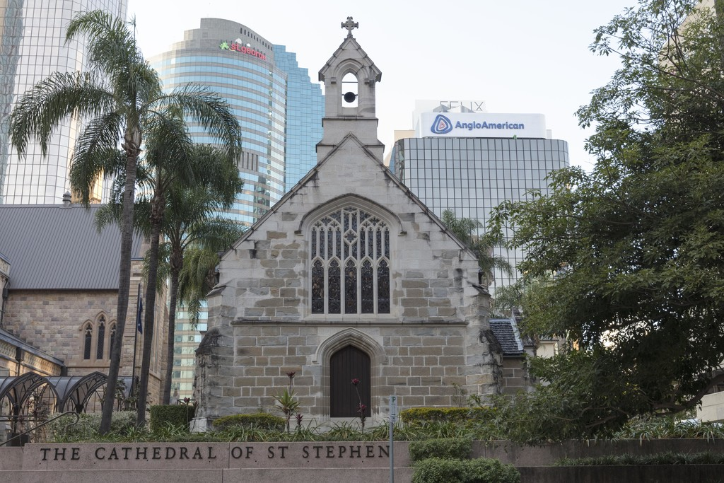 The Cathedral of St Stephen Brisbane  by nicolecampbell