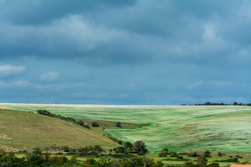The South Downs by rumpelstiltskin