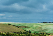 4th Sep 2019 - The South Downs