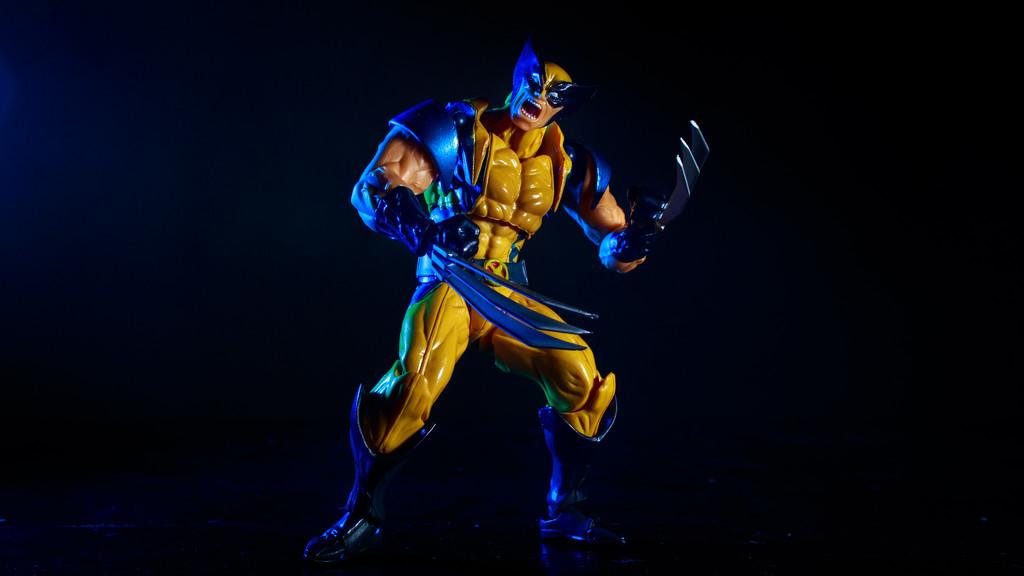 Wolverine by batfish