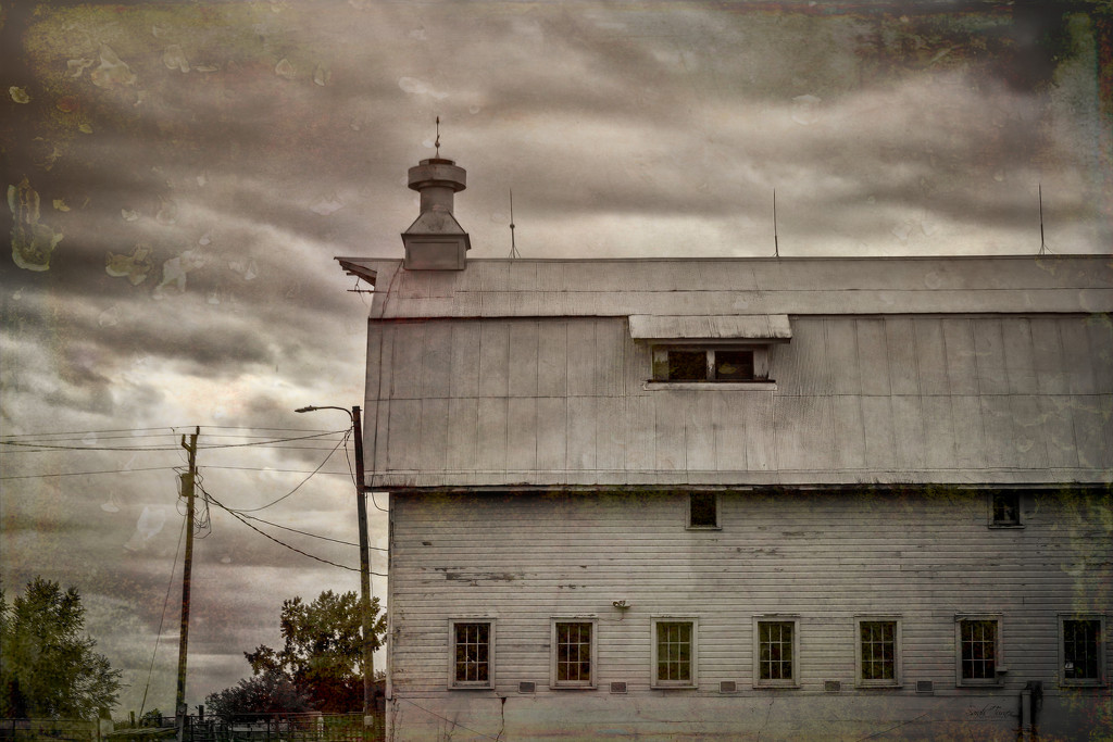 Barn of many windows by samae
