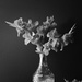 playing with my gladiolus-2 by jernst1779