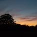 Wiltshire sunset