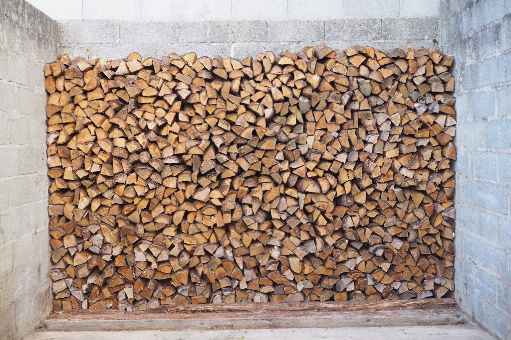 How much wood would a wood stocker stock if a wood stocker could stock wood? by s4sayer