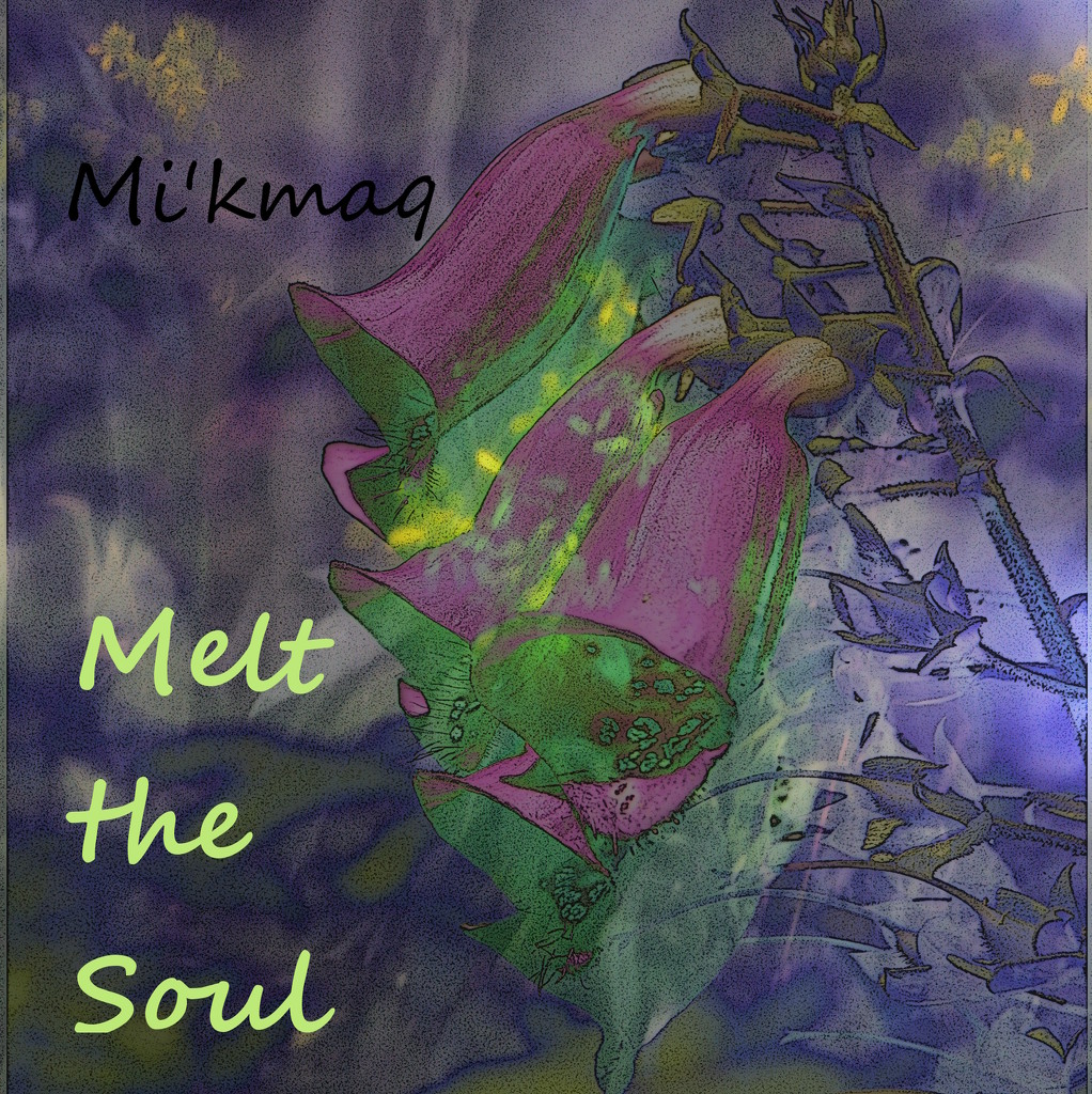 Mi'kmaq Album by francoise