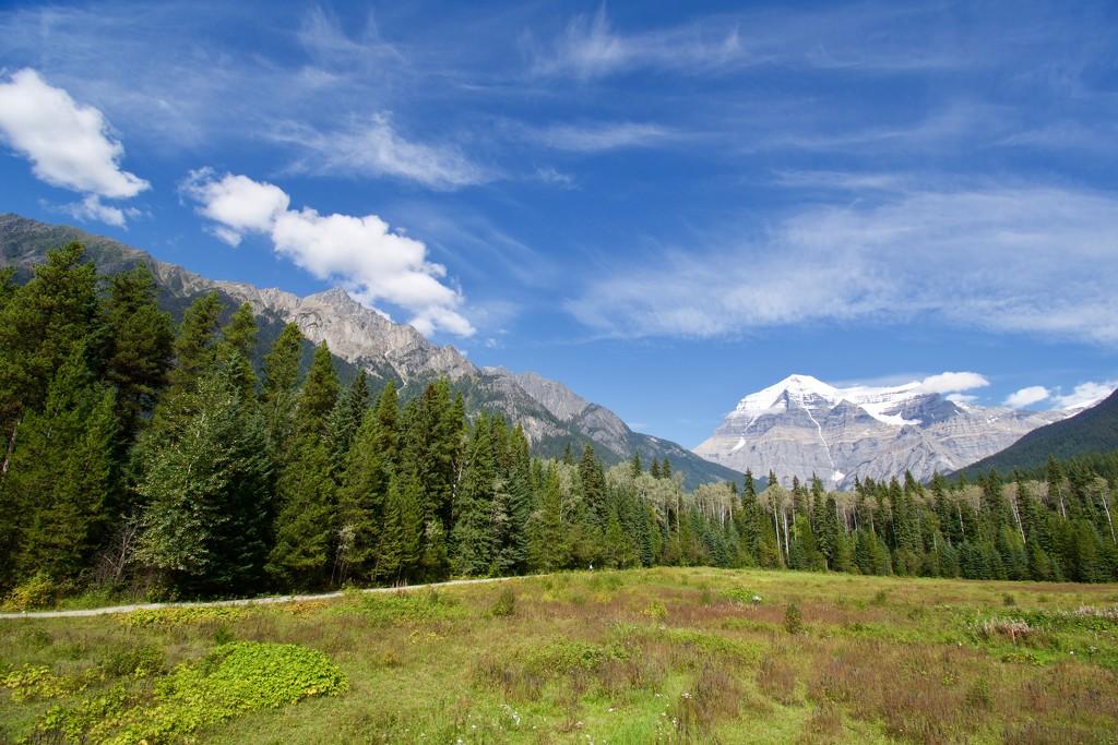 Mt Robson DSC_6592 by merrelyn