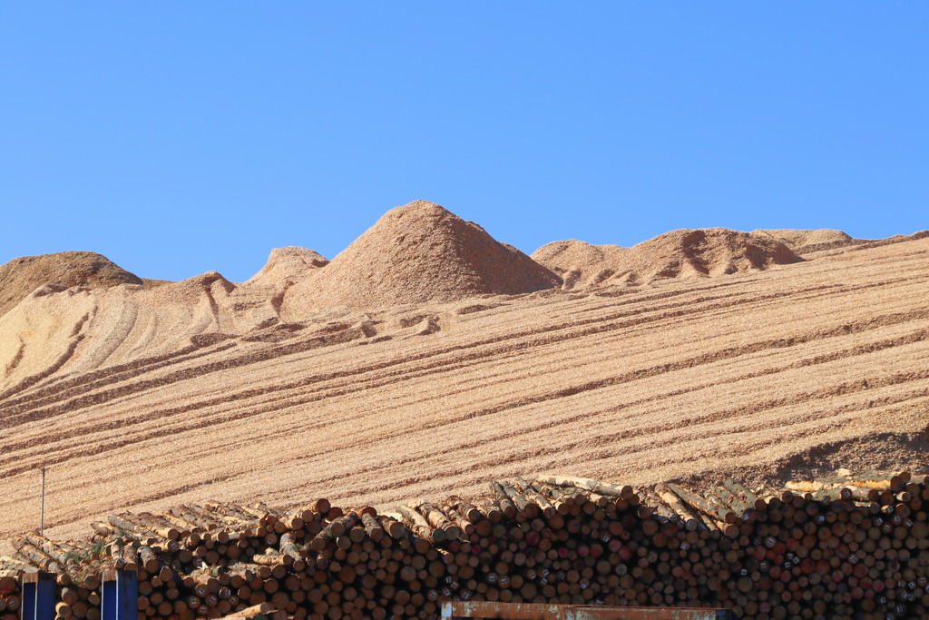 Wood chips by gilbertwood