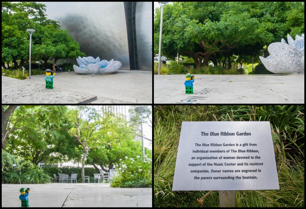 (Day 208) - The Blue Ribbon Garden by cjphoto