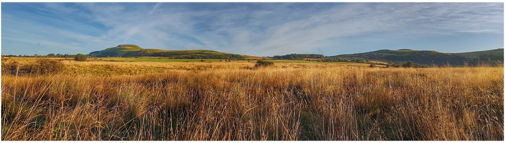 A panoramic view from my early morning stroll  by lyndamcg