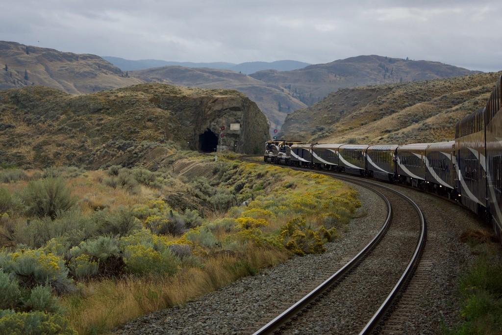 An Amazing Journey DSC_7563 by merrelyn