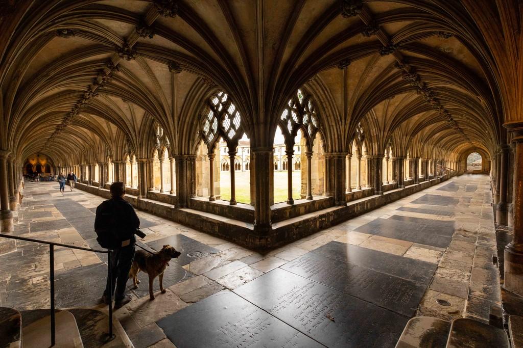cloisters  by shepherdmanswife