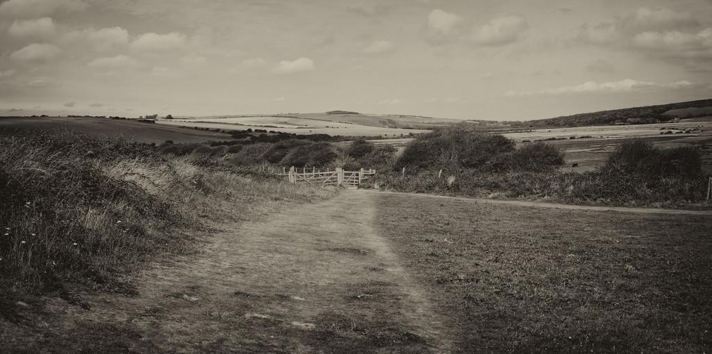 Cuckmere panorama by rumpelstiltskin