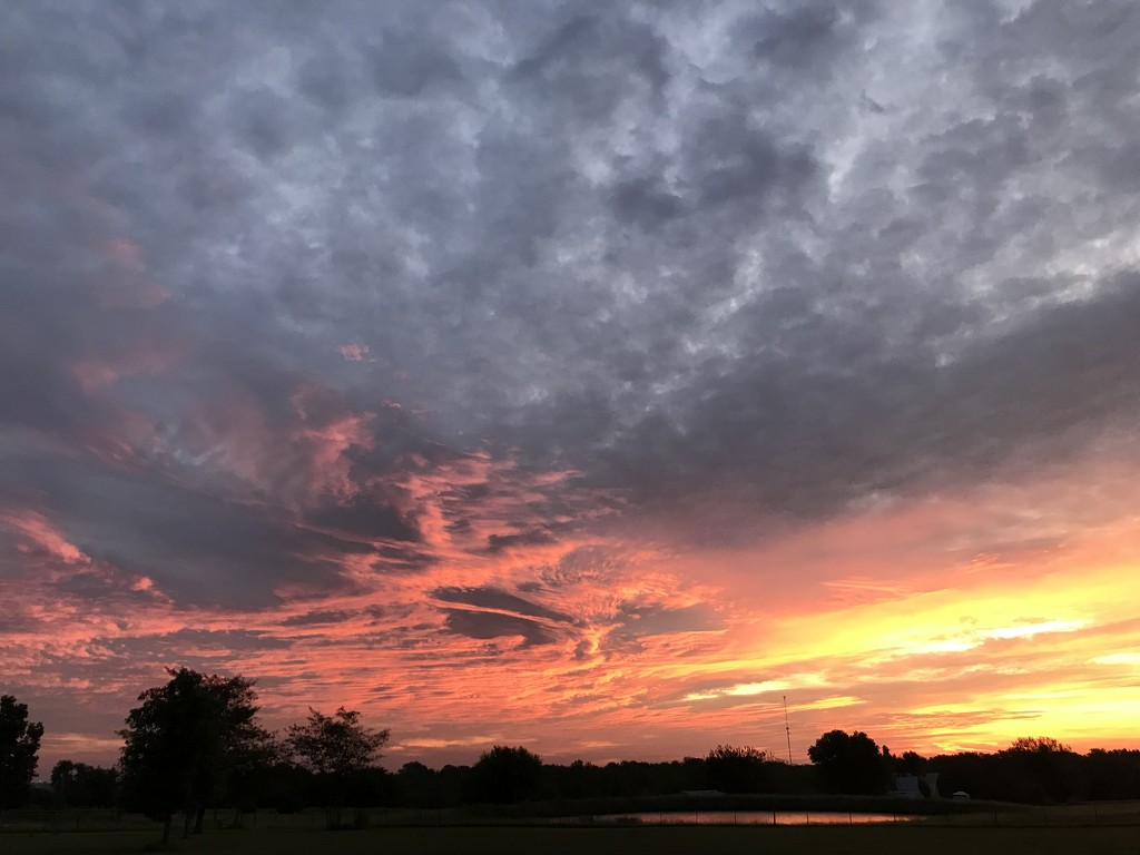 A New Sunrise by genealogygenie