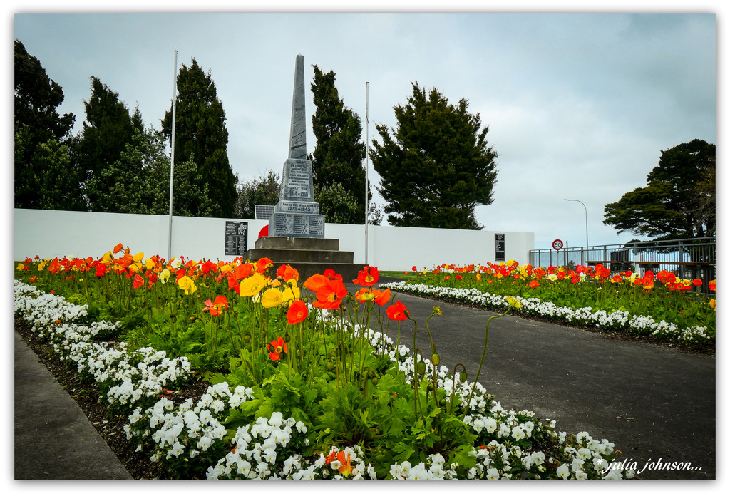 Poppies at the Cenotaph.. by julzmaioro