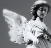 11th Sep 2019 - Cemetery angel