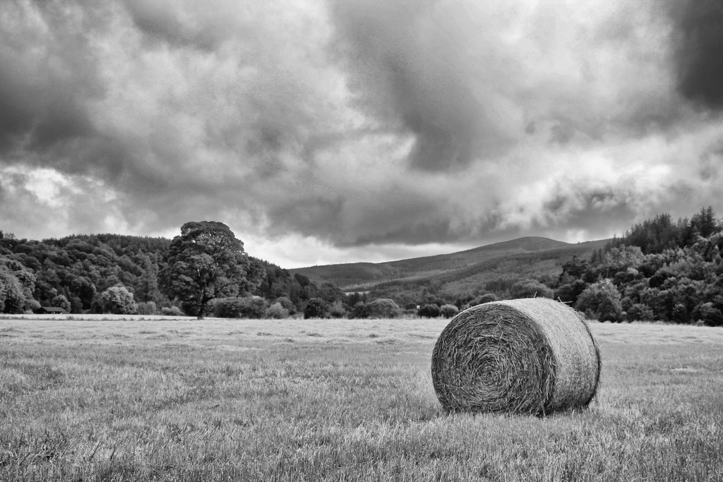 A solitary hay bale by jamibann