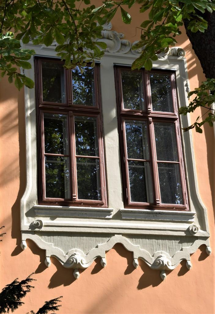 Wonderful windows in the house by kork