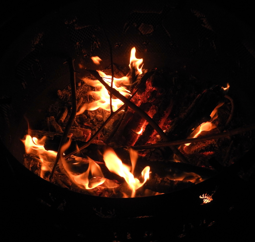 The fire that took 5 years to make by homeschoolmom