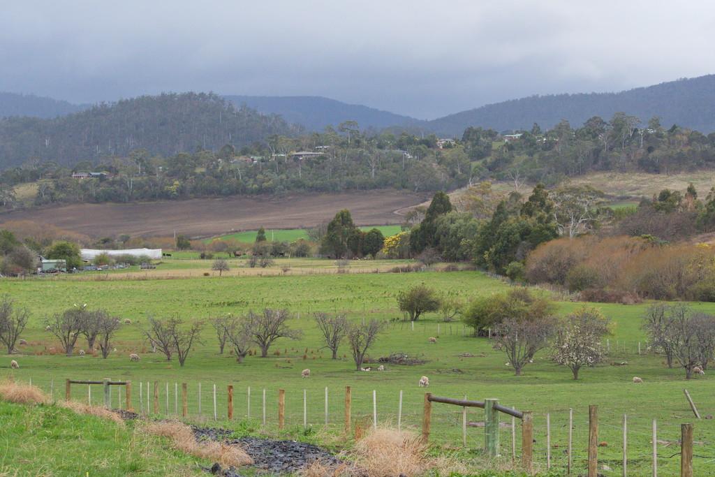 Rural Landscape by kgolab