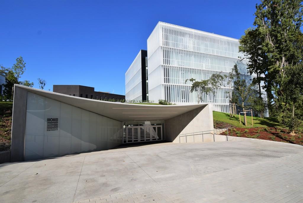 Moholy - Nagy University of Art (1) by kork