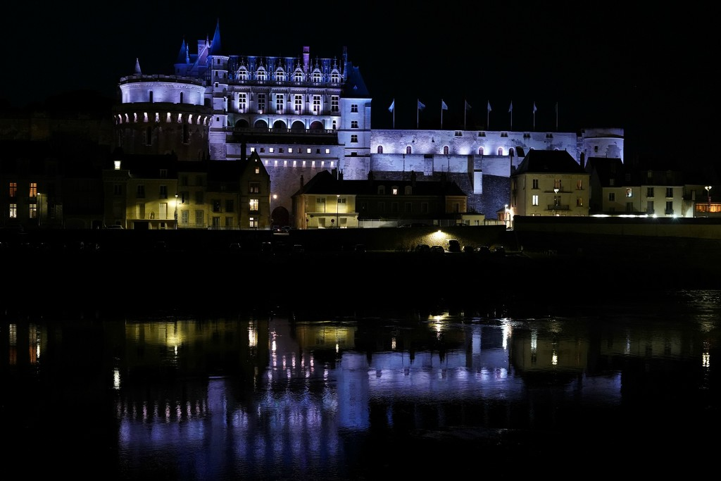 NF-SOOC Day 12: Château Royal, Amboise by vignouse