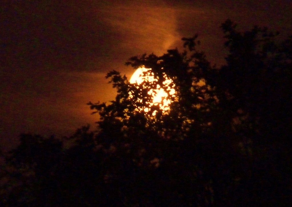 Big moon rising by lellie