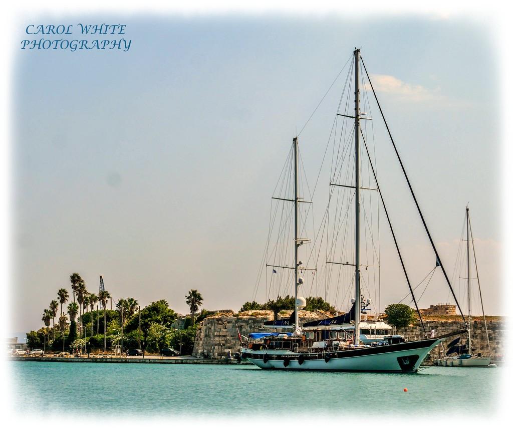 Entering Harbour by carolmw