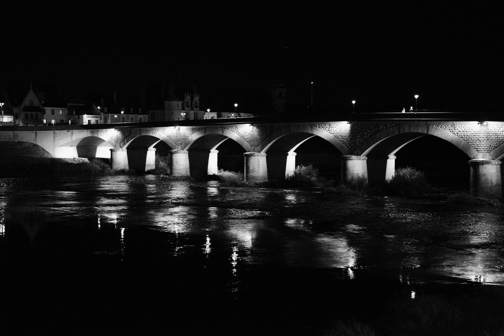 NF-SOOC Day 13: River Bridge at Amboise by vignouse