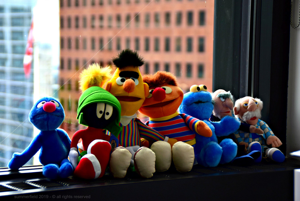 seven muppets all in a row! by summerfield
