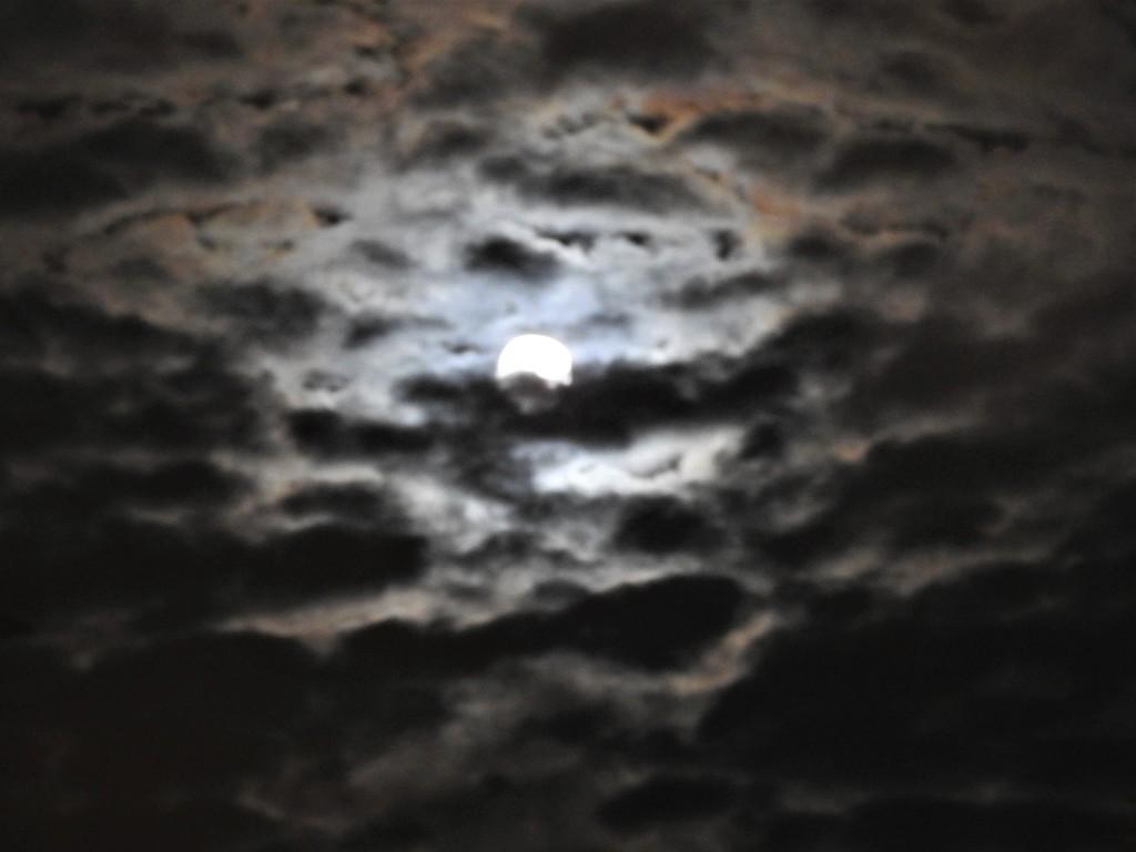 Moonlight by oldjosh