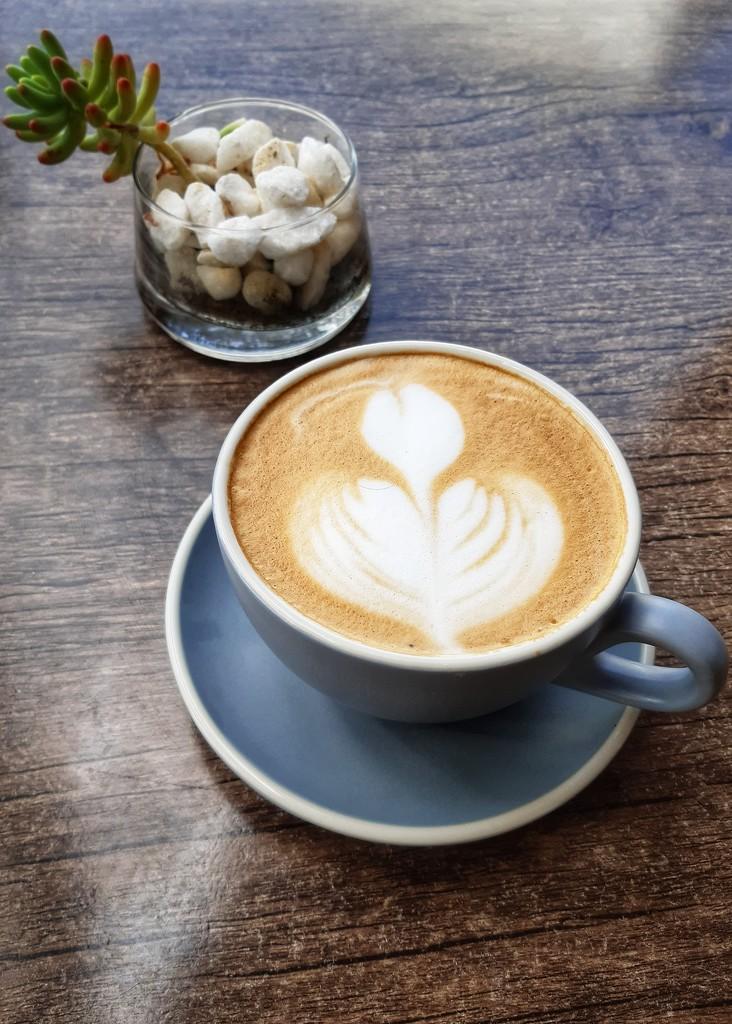 Love coffee  by salza