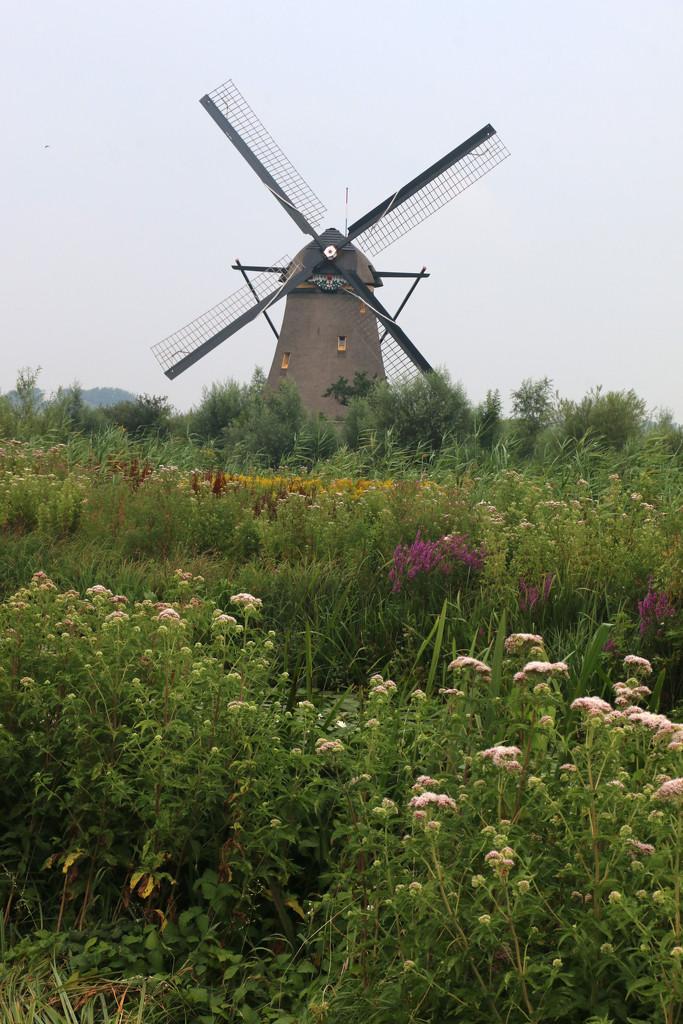 Windmill by ingrid01
