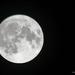 Y10 M09 D256 Full Moon
