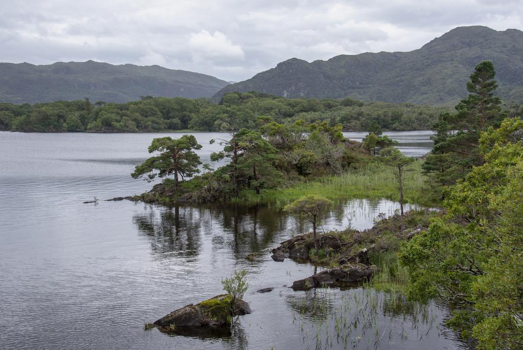 Killarney National Park by ksmale