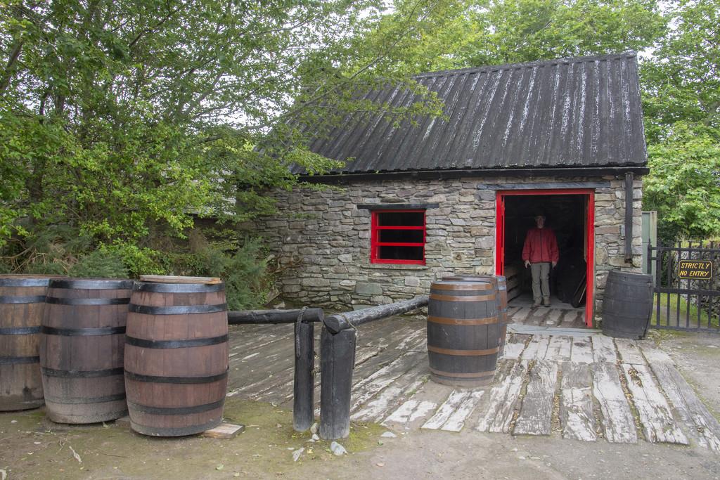 Muckross House Farm by ksmale