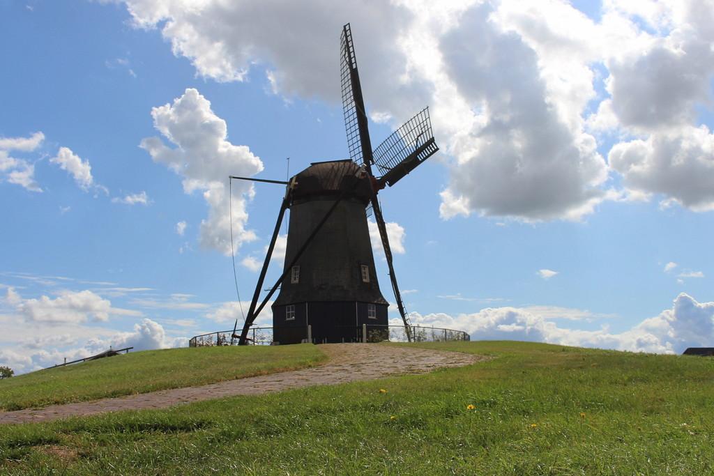O, you love windmills, I supose. by pyrrhula