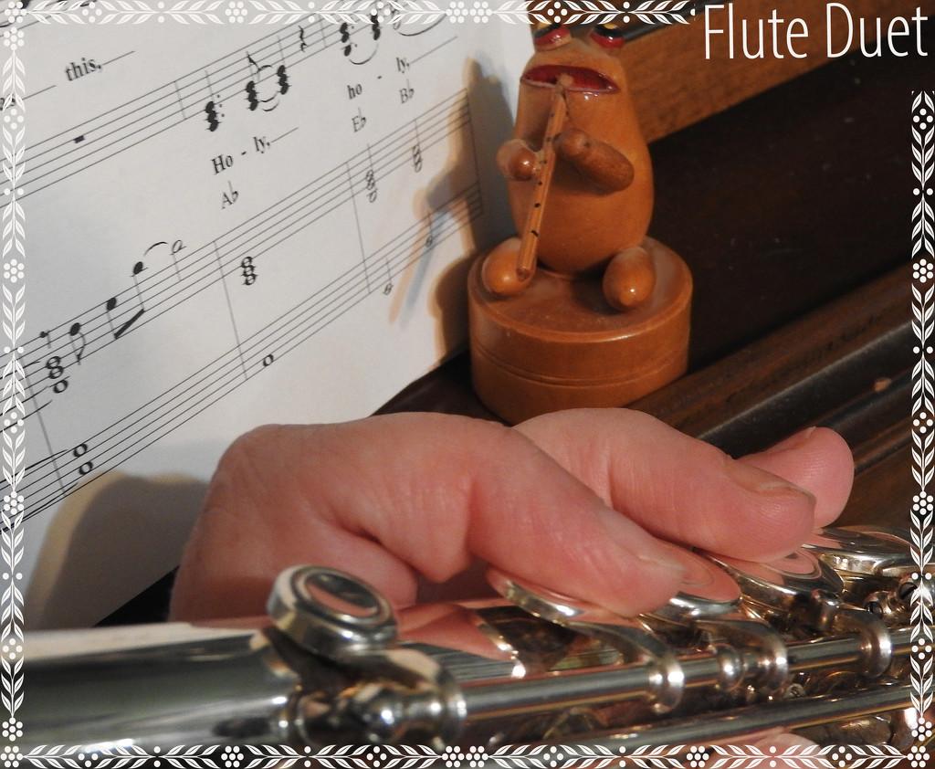 Flute duet by homeschoolmom