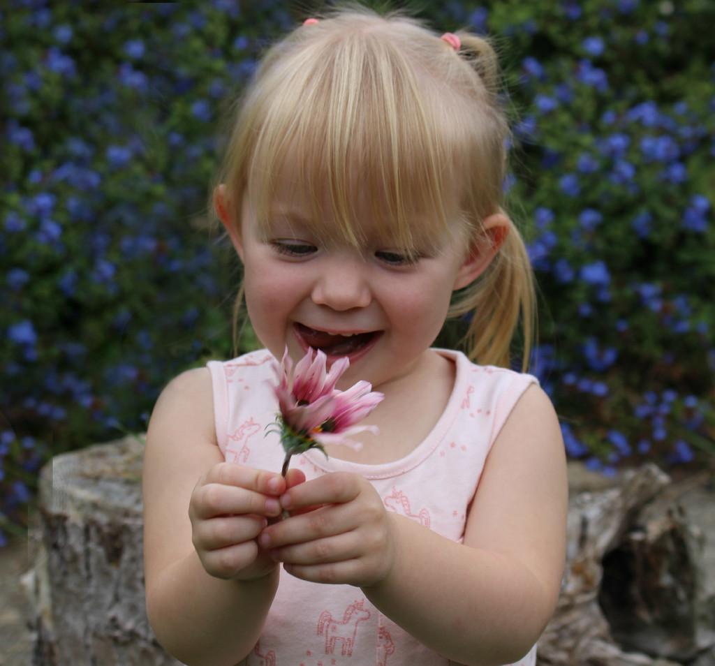 Pretty Flower . by wendyfrost