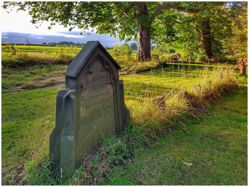A lovely woodland walk from the caravan site and came across these pet graves. What a lovely place for the owners trusted friends to RIP  by lyndamcg