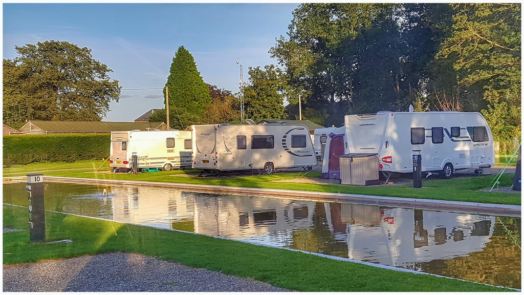 Having a mid week break and found this lovely small caravan site with the caravans all sited round this pond which has some koi carp in. by lyndamcg