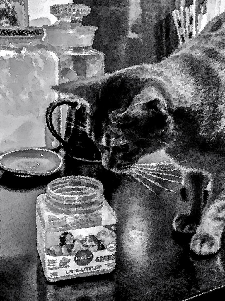 The treat jar needs refilling!! by berelaxed