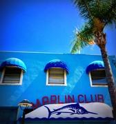 16th Sep 2019 - The Marlin Club